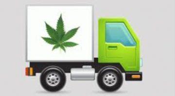 Professor Sage Dr Greens Premier Emporium Apothecary Cannabis Collective Club